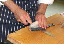 Le hareng est un poisson gras.